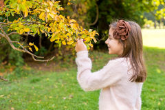 Little girl outdoors at beautiful autumn day Royalty Free Stock Photos