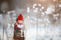 Little girl outdoors on winter Stock Photo