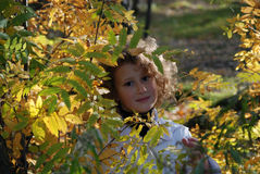 Little girl in a park Royalty Free Stock Image