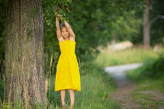 Little girl in a Park near a tree. Nature. Royalty Free Stock Images