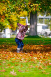 Little girl in the park. Little girl playing in the park by grabbing a branch from a tree stock image