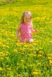 Little girl in the park Stock Photos