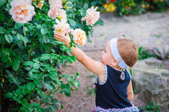 Little girl in the park stretches in roses Royalty Free Stock Photography