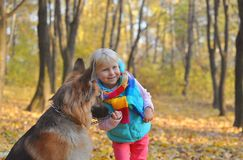 Little girl in the park their home with a dog.  Royalty Free Stock Photo
