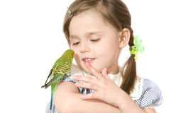 Little girl with Parrot. The beautiful little girl holds Parrot and smiles on white background close up Royalty Free Stock Photography