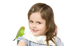 Little girl with Parrot. The beautiful little girl holds Parrot and smiles on white background close up Stock Photo