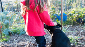 Little girl patting black dog Stock Photo