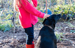Little girl patting dog Stock Image