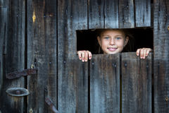 Little girl peeking through a crack in a wooden shed. Fun. Royalty Free Stock Photos