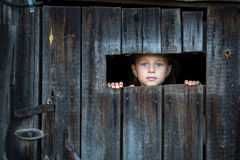 Little girl peeking through from the window at doors. Locked in the shed Royalty Free Stock Photos