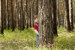 A little girl peeping from behind the trees Stock Photography