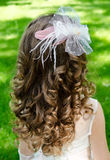Little girl with perfect hairstyle in princess dress Stock Photos