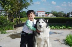 Little girl with pet. Husky in countryside outdoor Royalty Free Stock Photo