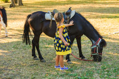Little girl pet pony horse outdoor in park. Summer day Royalty Free Stock Photos