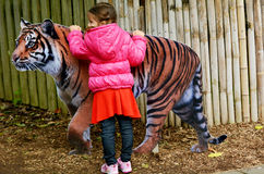 Little girl petting Sumatran Tiger Stock Image