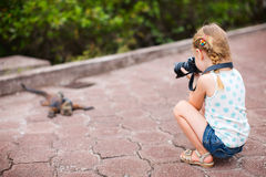 Little girl photographing iguana Stock Image