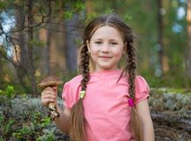 Little girl pick up mushrooms in forest Stock Photos