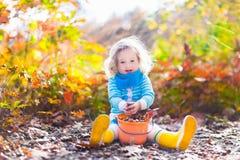 Little girl picking acorns in autumn park Royalty Free Stock Photos