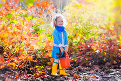 Little girl picking acorns in autumn park Royalty Free Stock Images