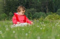 Little girl picking flowers. Beautiful little girl picking flowers at meadow Stock Photography