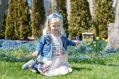 Little girl picking flowers in springtime. Cute little girl picking flowers in springtime Stock Photos