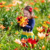 Little girl picking lilly flowers. Cute little girl picking lily flowers in blooming summer garden. Child holding lilies bouquet in beautiful flower field. Kid Stock Image