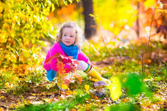 Little girl picking mushrooms in autumn forest Stock Images