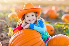 Child playing on pumpkin patch Stock Photo