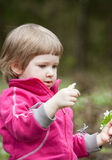 Little girl picking snowdrops Stock Photo
