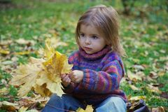Little girl picking up autumn leaves Stock Images