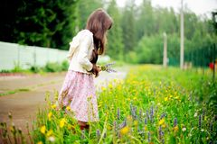 Little girl picking up summer flowers Royalty Free Stock Photos