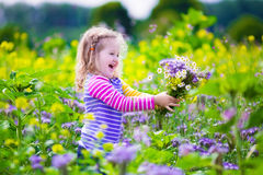 Little girl picking wild flowers in a field Stock Photos