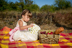 Little girl on a picnic Royalty Free Stock Images