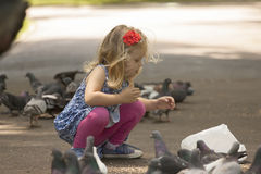 Little girl and pigeons Stock Image