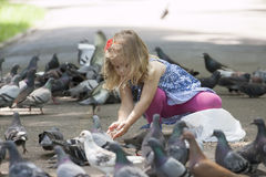 Little girl and pigeons Royalty Free Stock Photos