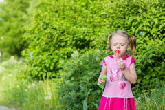 Little girl with pigtails blows soap bubbles Royalty Free Stock Photography