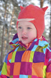 Little girl in a pine forest in winter. Royalty Free Stock Images