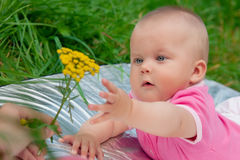 The little girl in pink clothes Stock Images