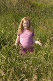Little girl in pink clothes between high grass Royalty Free Stock Images