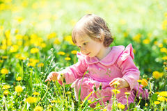 Little girl in a pink dress is looking at a dandelion in a green clearing. Royalty Free Stock Photos