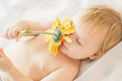 Little girl plaing whith flower Stock Image