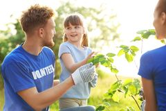 Little girl planting tree with volunteers. In park royalty free stock photo
