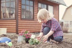 Little girl planting and watering flowers in garden Stock Image