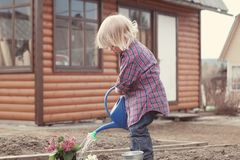 Little girl planting and watering flowers in garden Royalty Free Stock Images