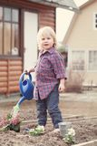 Little girl planting and watering flowers in garden Royalty Free Stock Image