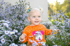 Little girl play in aster flowers in the park. stock photo