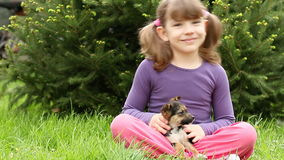 Little girl play with puppy stock footage
