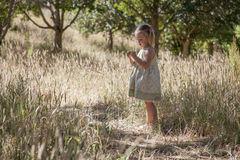 Little girl play in the woods Royalty Free Stock Photo