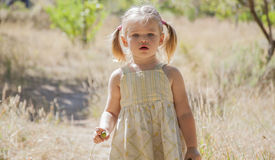 Little girl play in the woods. Little happy girl playing in the woods Royalty Free Stock Photography