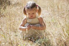 Little girl play in the woods. Little happy girl playing in the woods Royalty Free Stock Photo